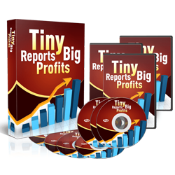 Tiny Reports, Big Profits