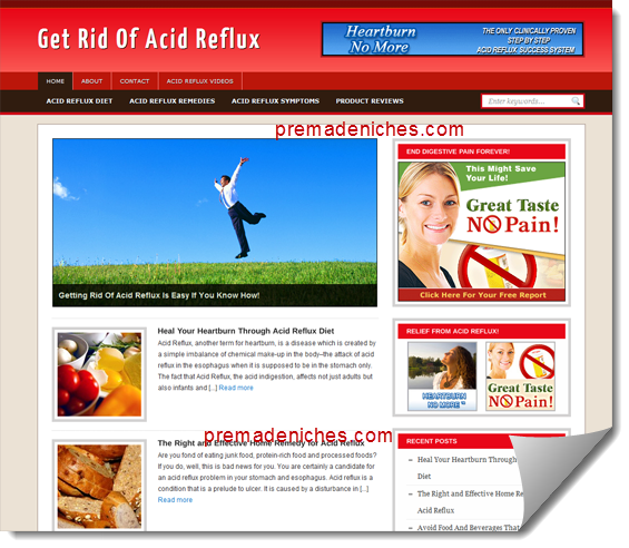acid reflux ready made blog